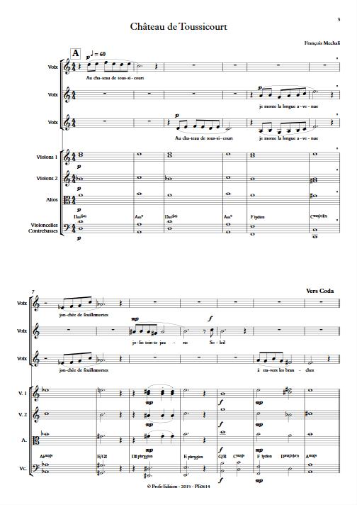 Chateau de Toussicourt - Chœur & Orchestre à Cordes - MECHALI F. - Partition