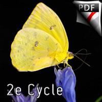 Chrysalis la légende du Papillon - Orchestre d'Harmonie - FRELAT G.