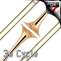 Concerto pour 2 Trombones - Trombones et Orchestre à Cordes - PIZON P.