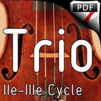 Largo Symphonie du Nouveau Monde - Trio Violons Violoncelle - DVORAK A.