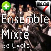 Divertimento - Ensemble à Géométrie Variable - BACH C. P. E.