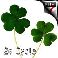Irish Dance Jigs - Quatuor de Clarinettes - TRADITIONNEL IRLANDAIS