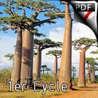 Madagascar - Ensemble de Clarinettes - TROTOUX J-M.