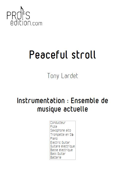 Peaceful stroll - Musique Actuelle - LARDET T. - page de garde