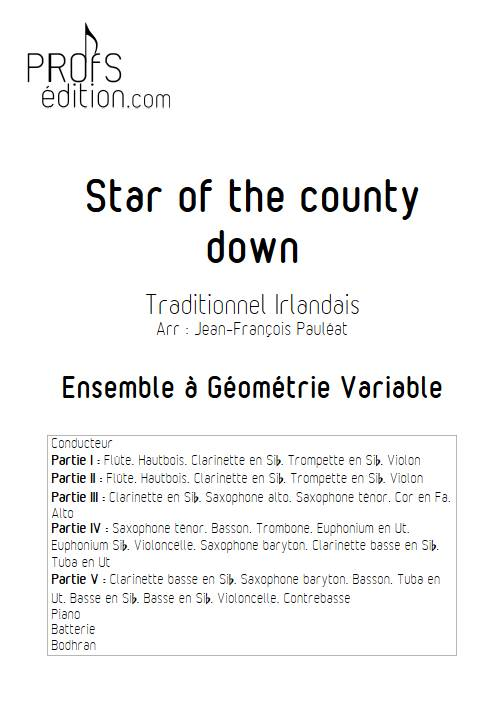 Star of the county down - Ensemble Variable - TRADITIONNEL IRLANDAIS - page de garde