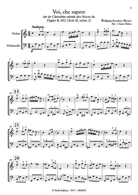 Voi che sapete - Duo Violon Violoncelle - BIZET G. - Partition