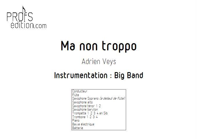 Ma non troppo - Big Band - VEYS A. - page de garde